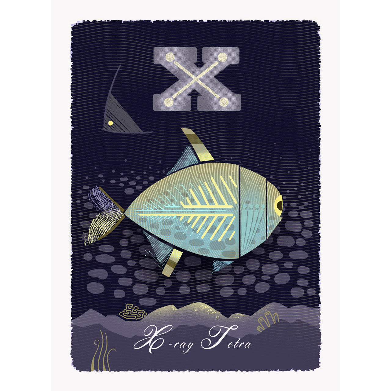 X-ray Tetra print by Graham Carter