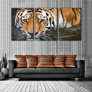 "3 Pieces Decorative 3D Painting ""Tiger's Look"""
