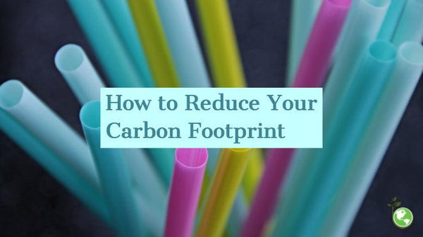 how to reduce your carbon footprint earth day