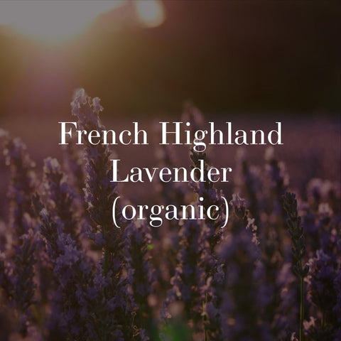 french lavender for organic natural skincare