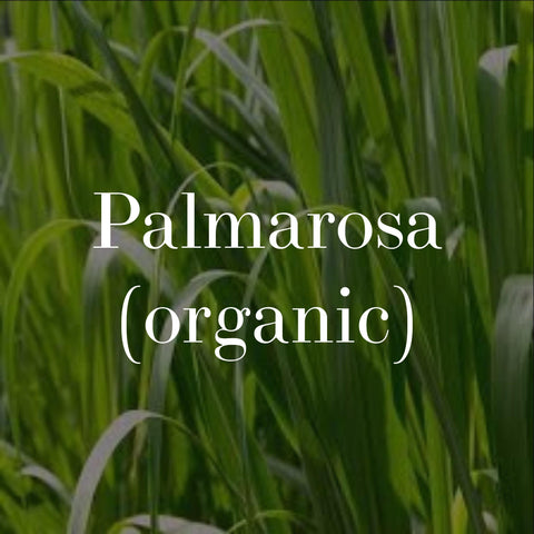 organic palmarosa for natural skincare