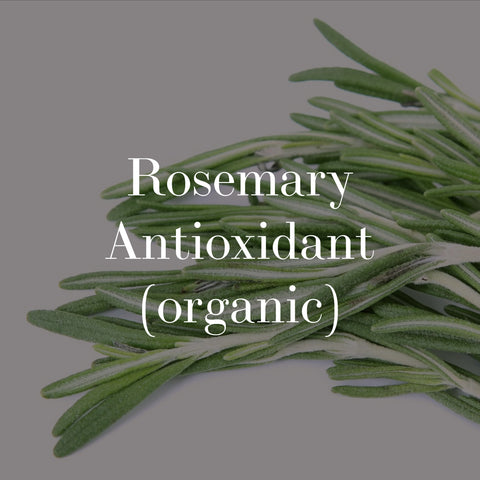organic rosemary antioxidant. skincare without synthetic preservatives.