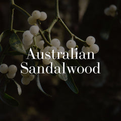 sandalwood - wildcrafted botanical skincare