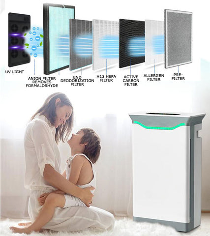 7 Stage Portable Air Purification System