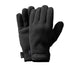 Fuji Polartec Glove Black