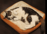 Comfy Toast Cat Bed