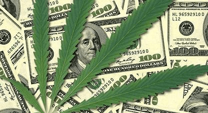 Eight Reasons to Invest in Cannabis Stocks