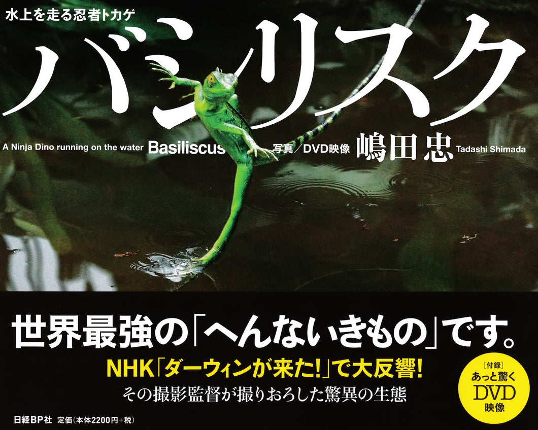 バシリスク 水上を走る忍者トカゲ (嶋田 忠)Basiliscus ( A ninja Dino running on the Water)  TADASHI SHIMADA