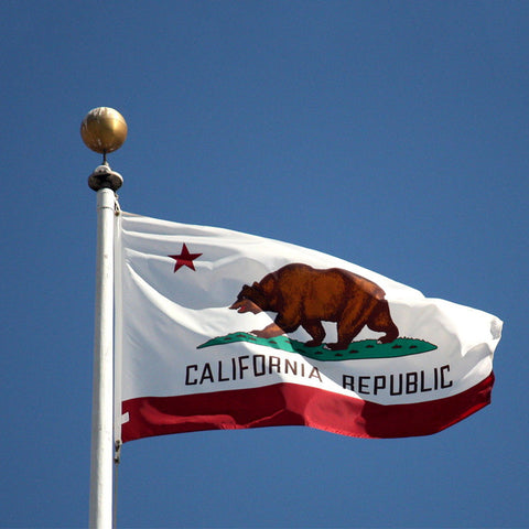 California Flag - Electric Origins