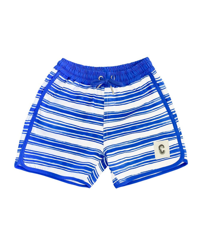 Seastripe Quick Dry Beach Shorts