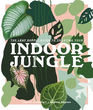 Leaf Supply Guide to Creating You Indoor Jungle