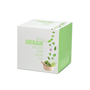 Steady Sticks - URBAN GREENS KITCHEN HERBS GROW KIT