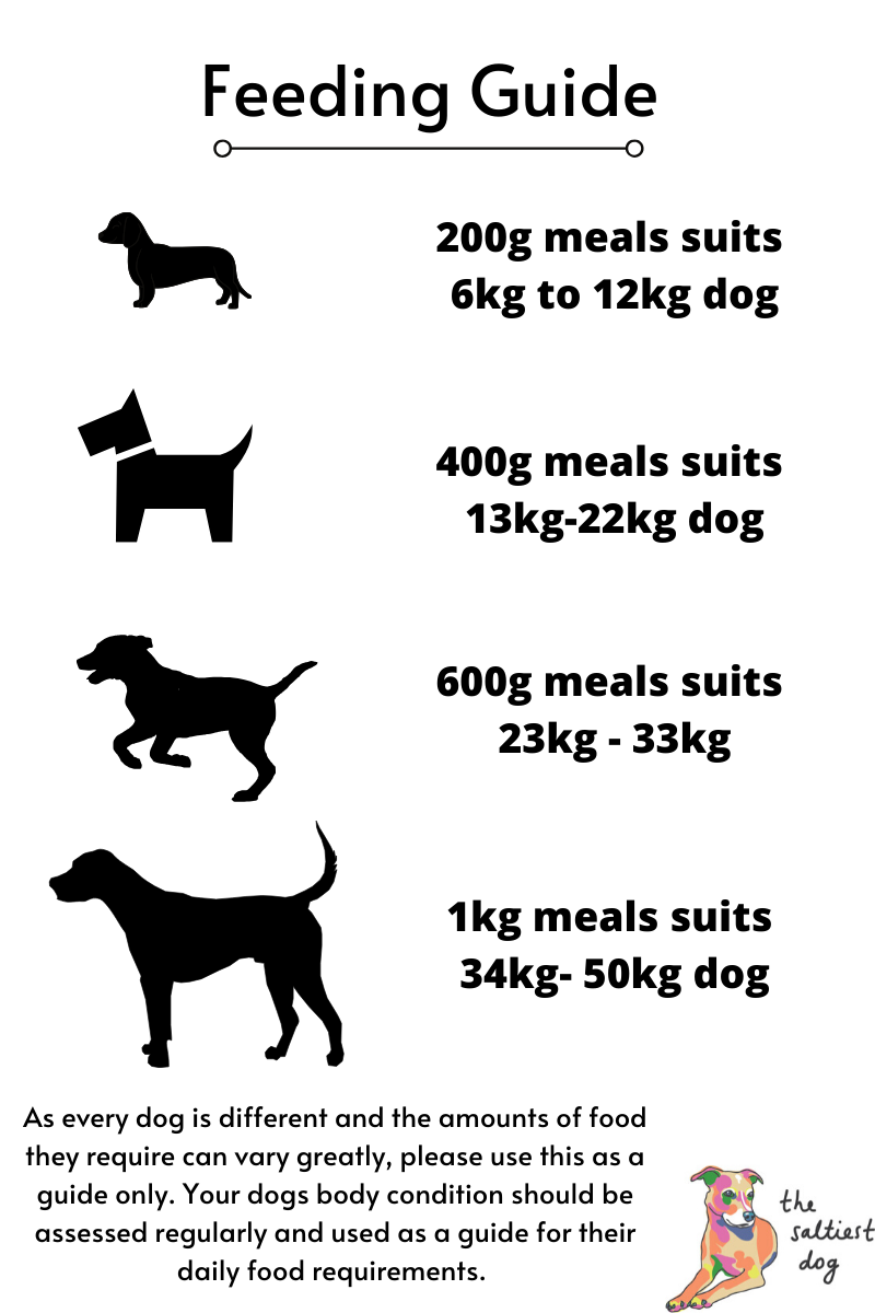 raw feeding guide amounts by dog weight