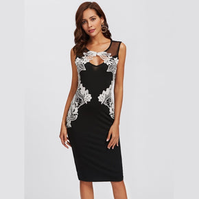 Black Lace Applique Mesh Panel Fitted Dress