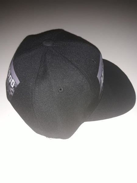 The New Promised Land Snapback Hat
