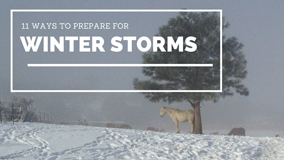 11 Ways to Prepare Your Barn for Winter Storms