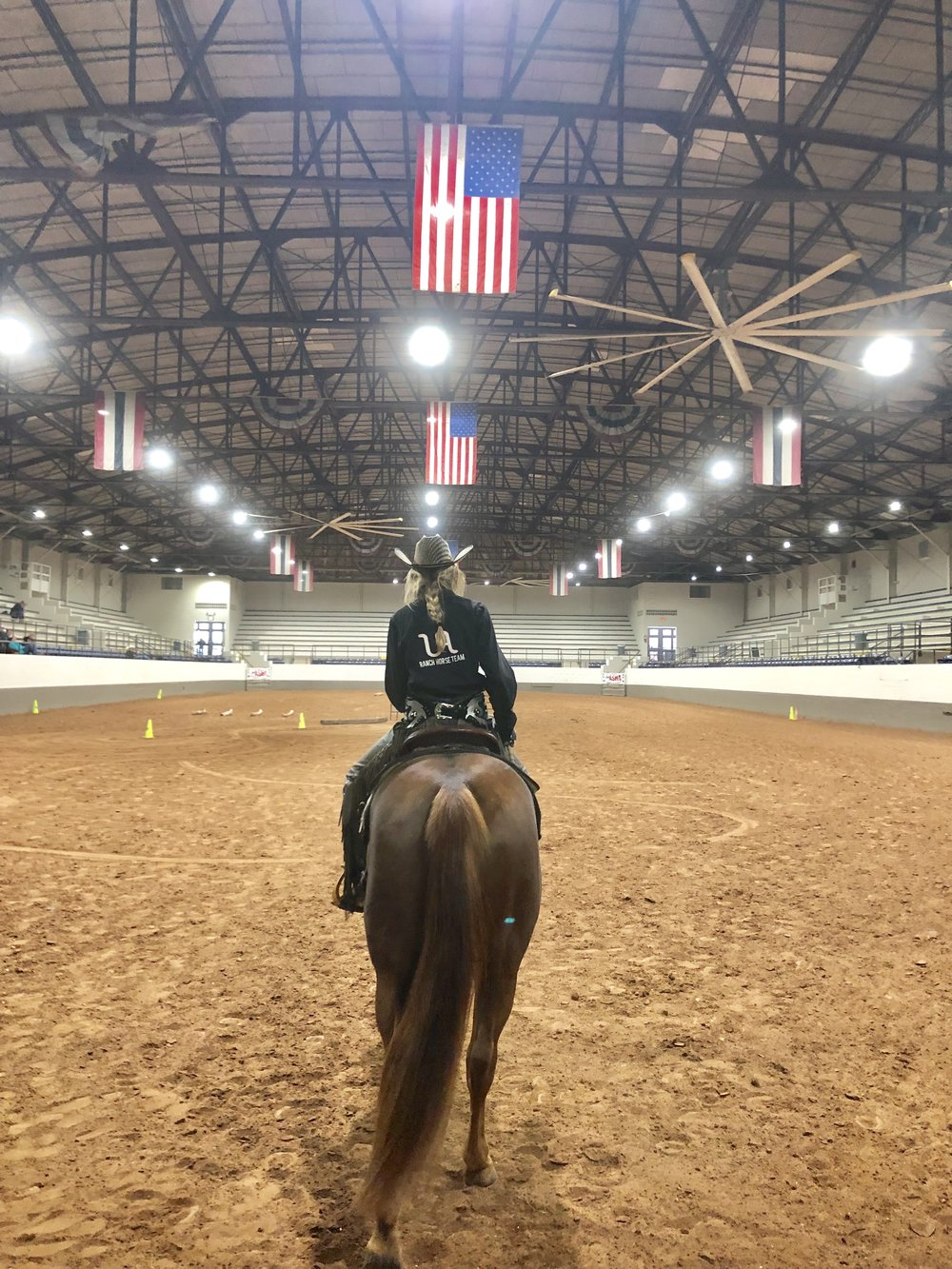 American Stock Horse Association - National Collegiate Championship Show