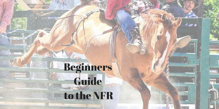 NFR For Beginners