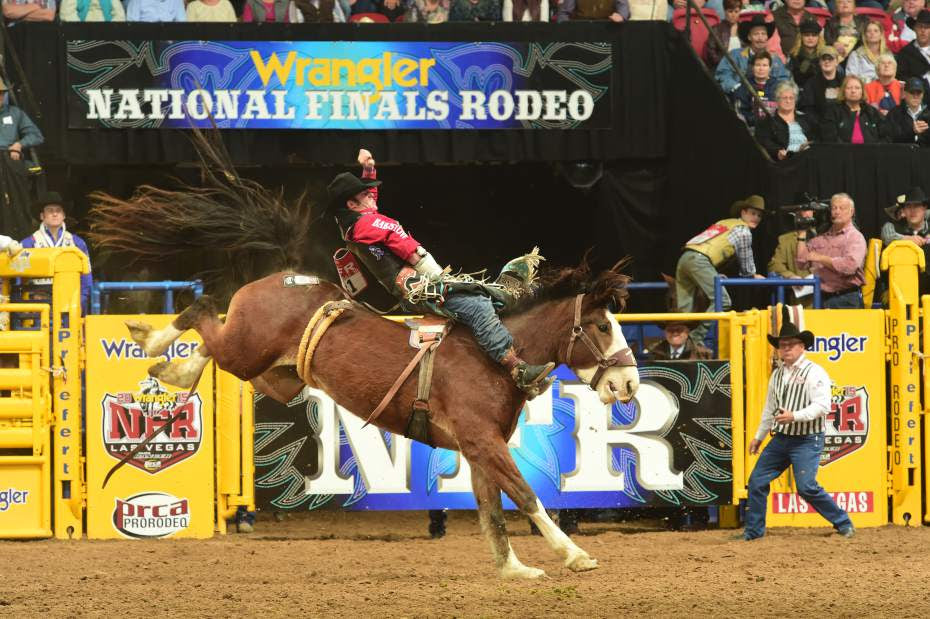 The 2015 NRHA Futurity kicked off on Thanksgiving Day with almost 500 entries in the Open Futurity Go Round