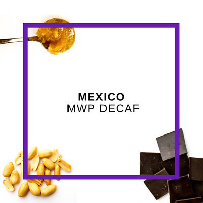 Decaf Mexico NWP 12oz (340g)