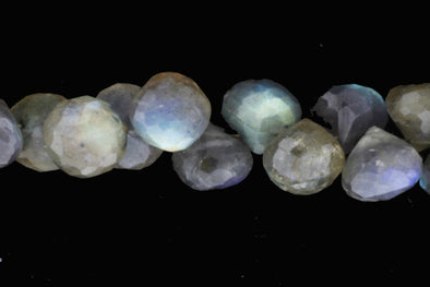 "Blue Labradorite 8mm Faceted Onion Shaped Briolettes 8"" Bead Strand"