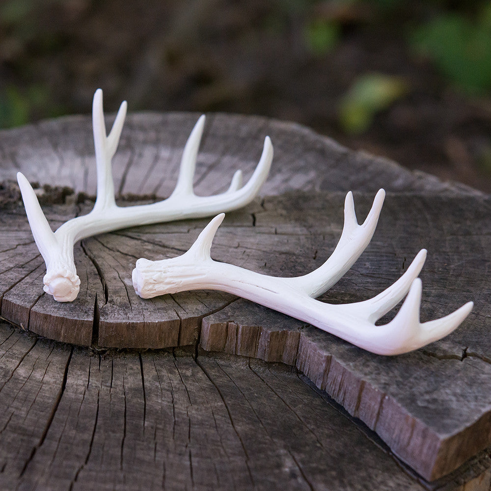 Miniature Faux Antler Stationery Card Holders (set of 6)