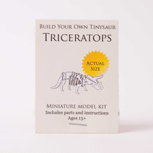 Build-your-own Triceratops Skeleton