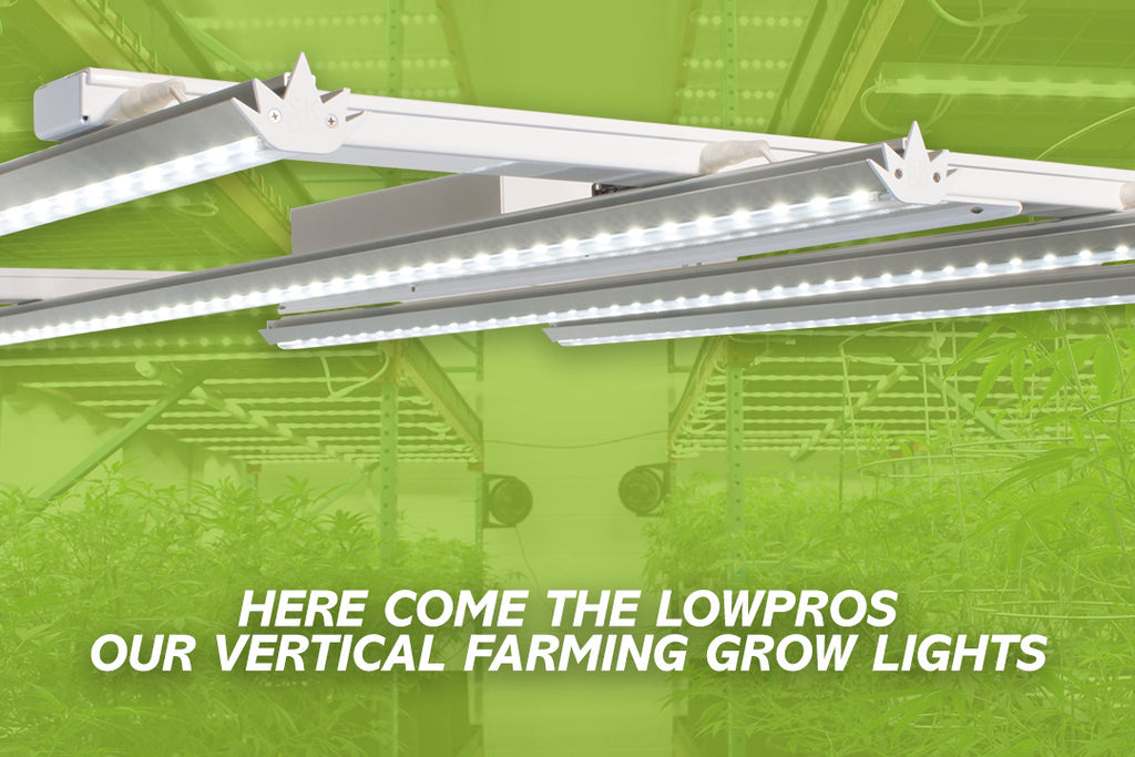 Launching our new LowPro grow lights