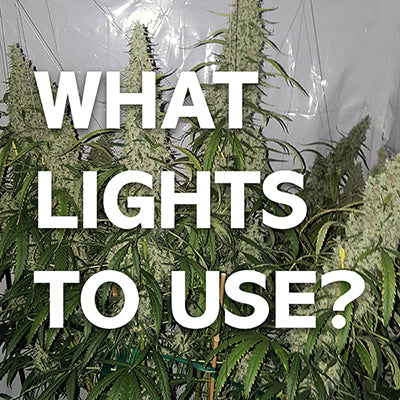 What is the right grow light for your indoor garden?