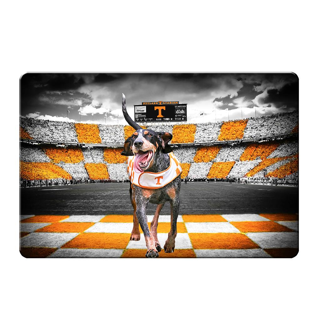 Tennessee Volunteers - Smokey's Backyard 2-Layer Dimensional Wall Art