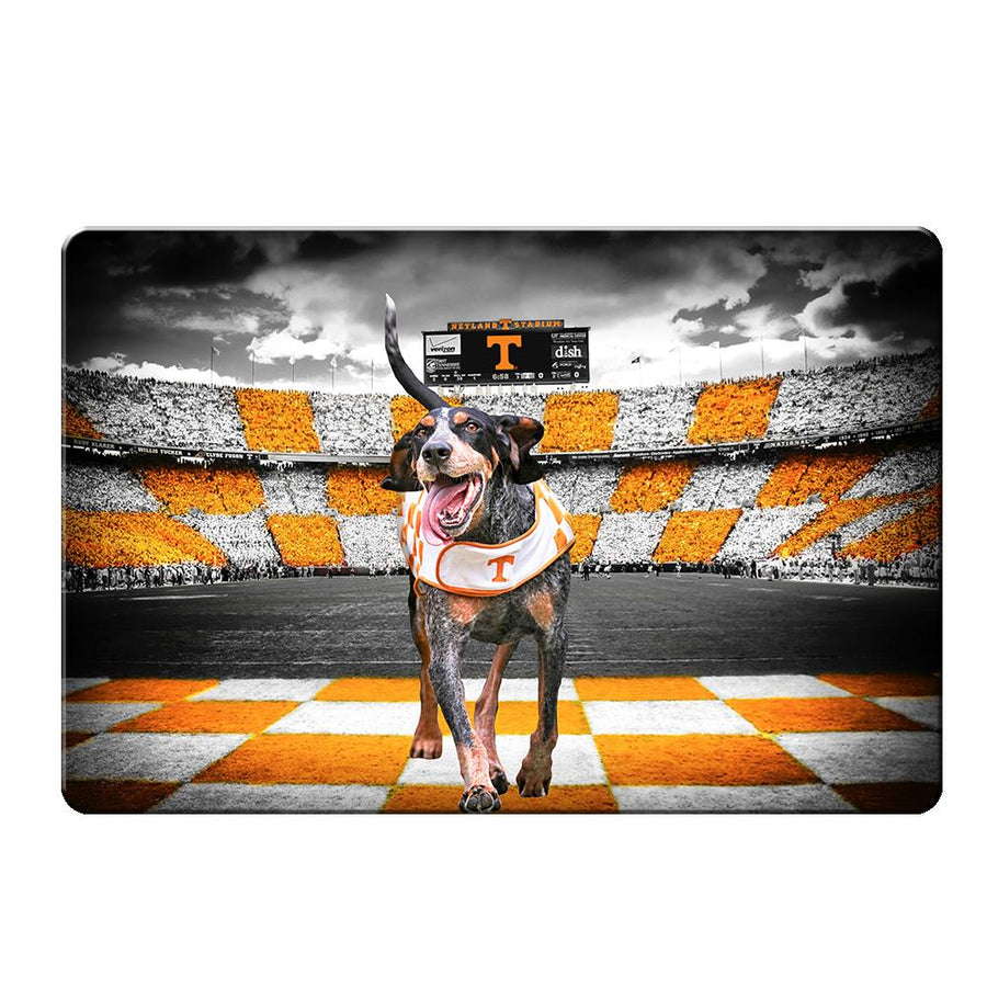 Tennessee Volunteers - Smokey's Backyard 2 Layers Dimensional Wall Art