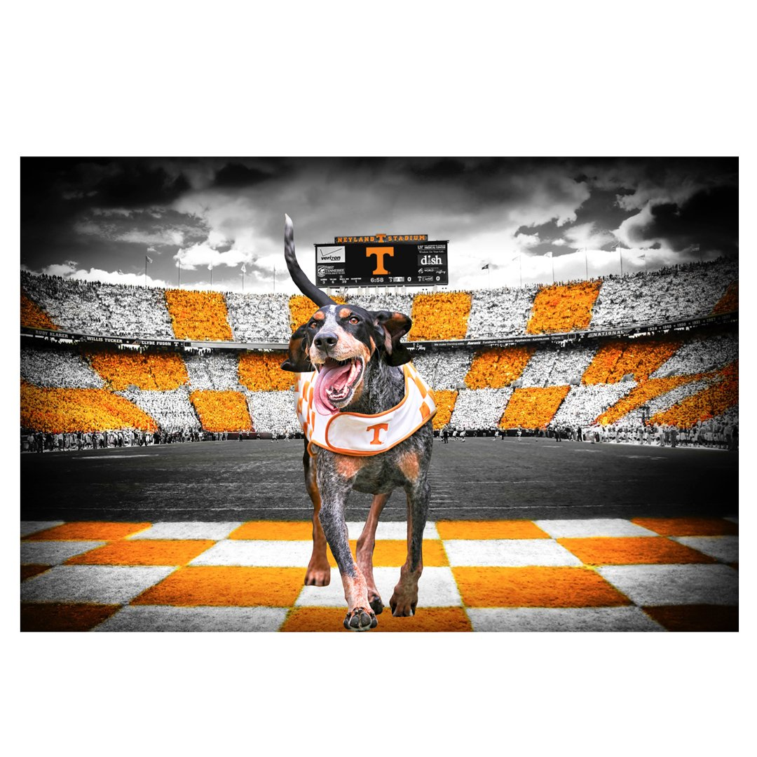 Tennessee Volunteers -  Smokey's Backyard 2 layer Dimensional
