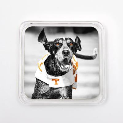 Tennessee Volunteers - Set of 4 Coasters - Smokey Collection