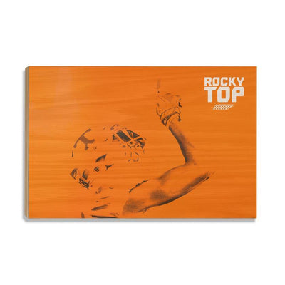 Tennessee Volunteers - One Rocky Top Orange
