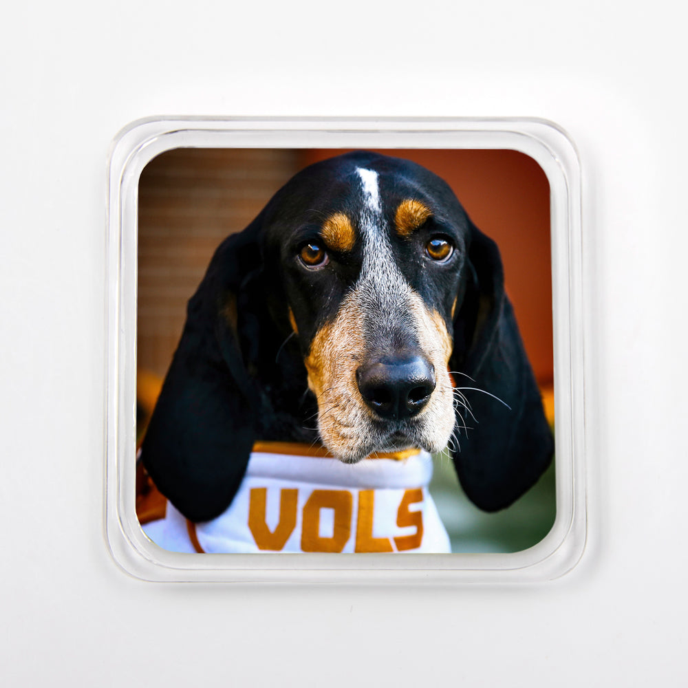 Tennessee Volunteers -  Smokey Vols Drink #Coaster