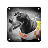 Tennessee Volunteers - Smokey Orange - College Wall Art #Metal