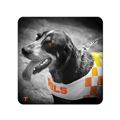 Tennessee Volunteers - Smokey Orange - College Wall Art #PVC