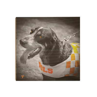 Tennessee Volunteers - Smokey Orange - College Wall Art #Wood
