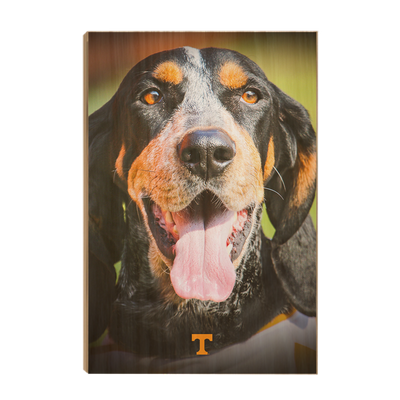 Tennessee Volunteers - Smokey Smiles