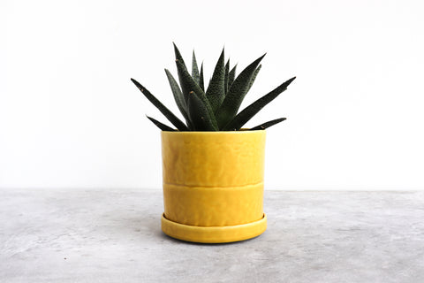Round Planter w/ Plate Pinched (Five Colors)