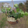 Hanging Planter (Medium)