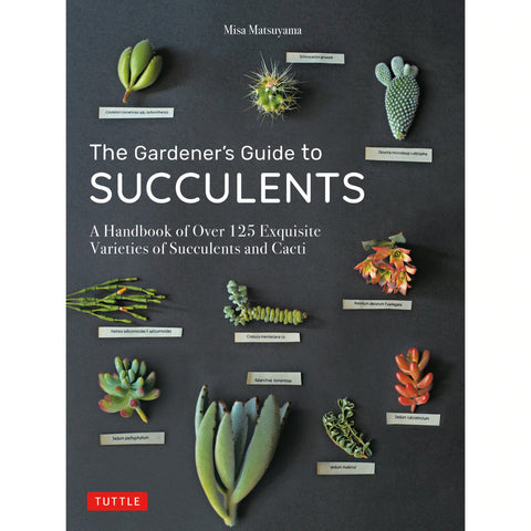 The Gardener's Guide to Succulents