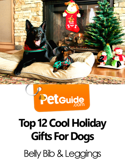 "As Seen On PetGuide.com's ""Top 12 Cool Holiday Gifts For Dogs"""
