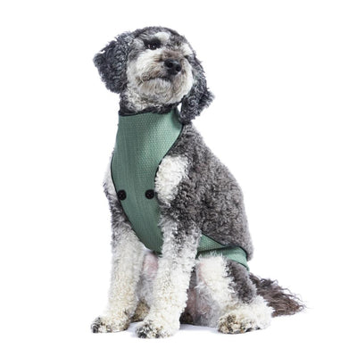 ECO BELLY BIB | chase green - T.O. Dogswear