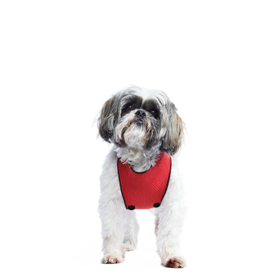 ECO BELLY BIB | jackie red - T.O. Dogswear