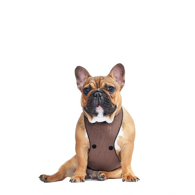ECO BELLY BIB | jamie brown - T.O. Dogswear