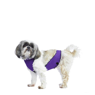 ECO BELLY BIB | lillian purple - T.O. Dogswear