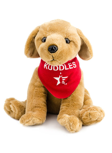 Kuddles Dog
