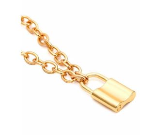 ADMK PadLock Necklace I Gold and Silver