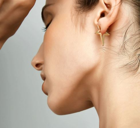 Star Gold Earrings on Model
